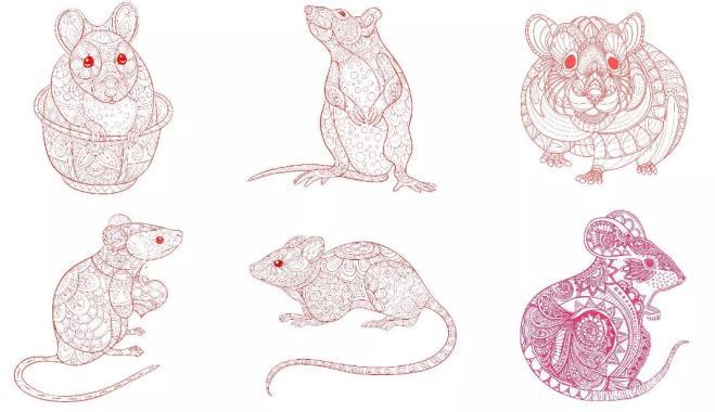 Linear Mouse.jpg