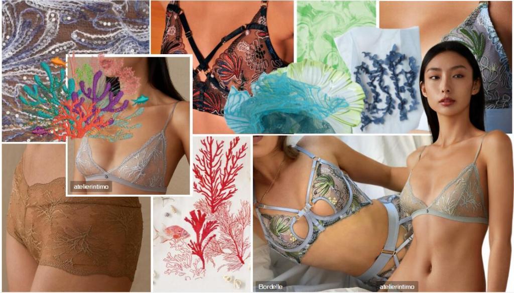 Women's Lace Underwear